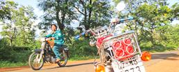 Photo of Easy Rider Bike